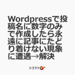 Wordpressで投稿名に数字のみで作成したら永遠に記事にたどり着けない現象に遭遇→解決